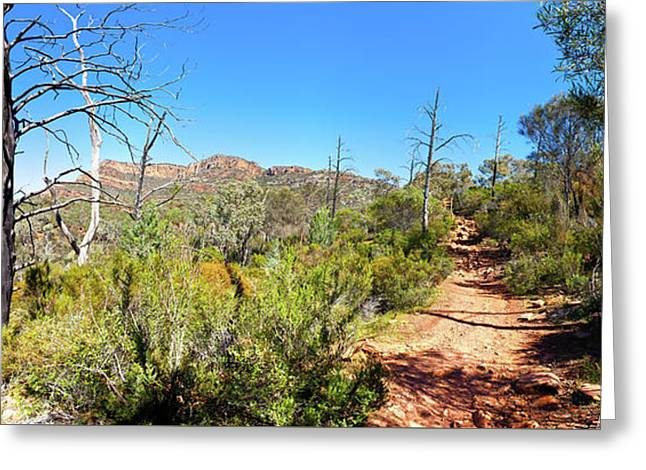 Arkaroo Rock Hiking Trail.wilpena Pound Greeting Card by Bill Robinson