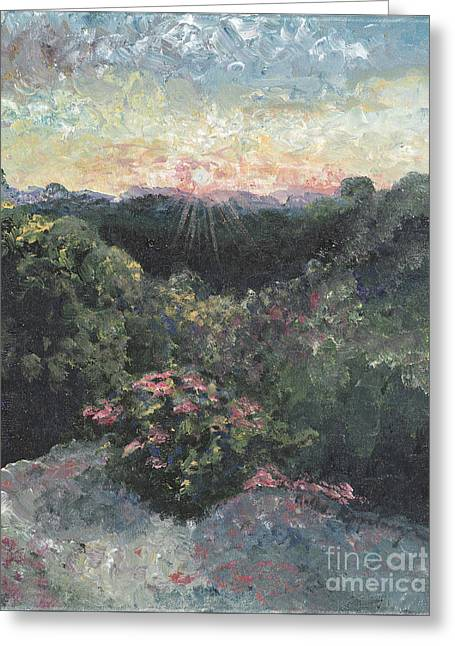 Arkansas Mountain Sunset Greeting Card by Nadine Rippelmeyer
