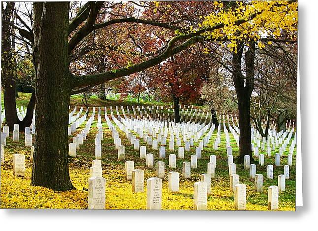 Arlington In Yellow Greeting Card