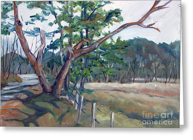 Around Cades Cove Greeting Card by Janet Felts