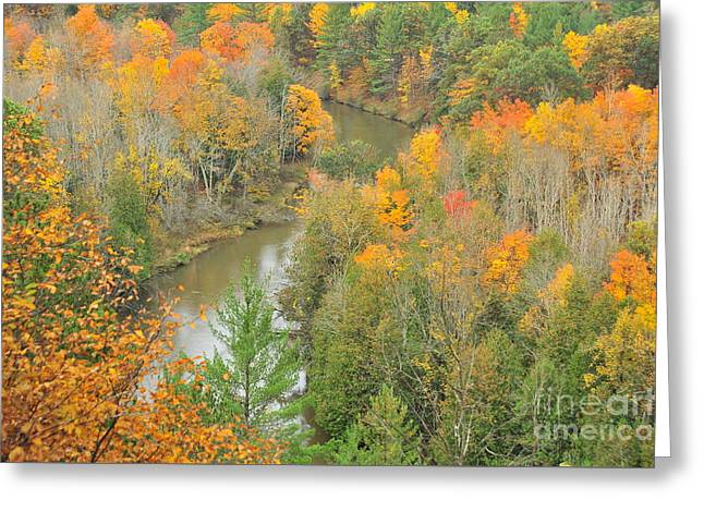 Around The River Bend Greeting Card