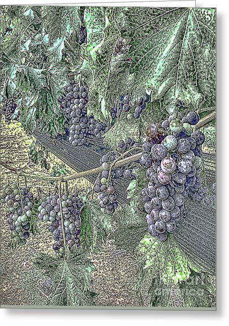 Arrington Grapes Greeting Card