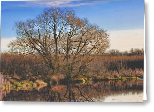 Artistic Creek Tree  Greeting Card
