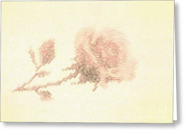 Greeting Card featuring the photograph Artistic Etched Rose by Linda Phelps