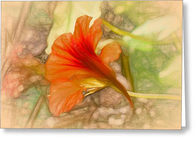 Artistic Red And Orange Greeting Card