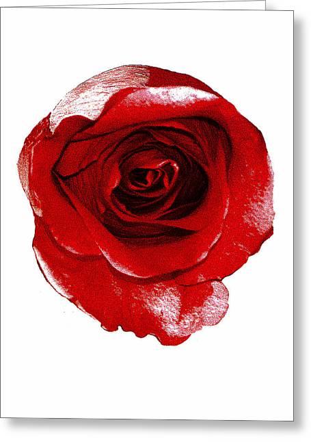 Artpaintedredrose Greeting Card