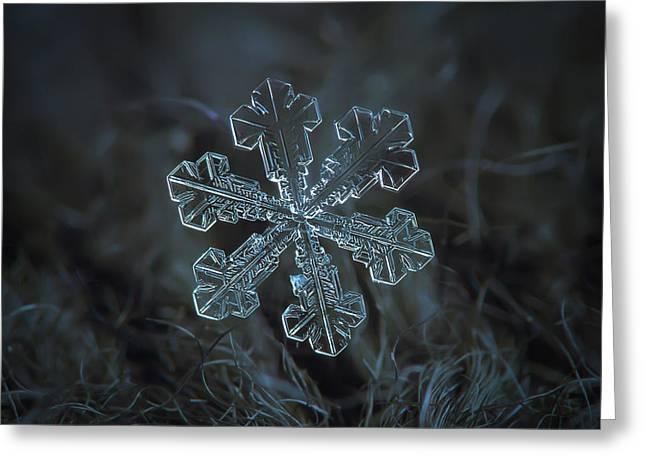 Snowflake Photo - Vega Greeting Card