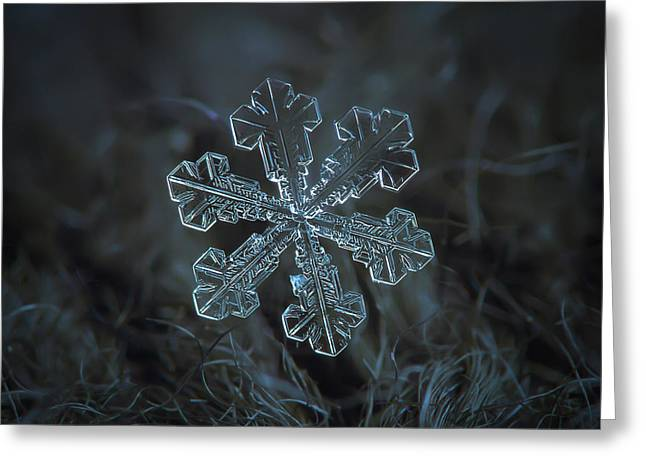 Greeting Card featuring the photograph Snowflake Photo - Vega by Alexey Kljatov