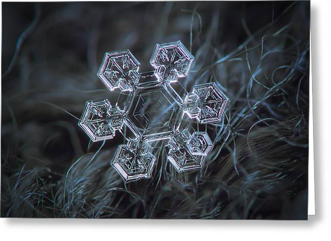 Greeting Card featuring the photograph Icy Jewel by Alexey Kljatov