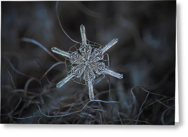 Snowflake Photo - Steering Wheel Greeting Card by Alexey Kljatov