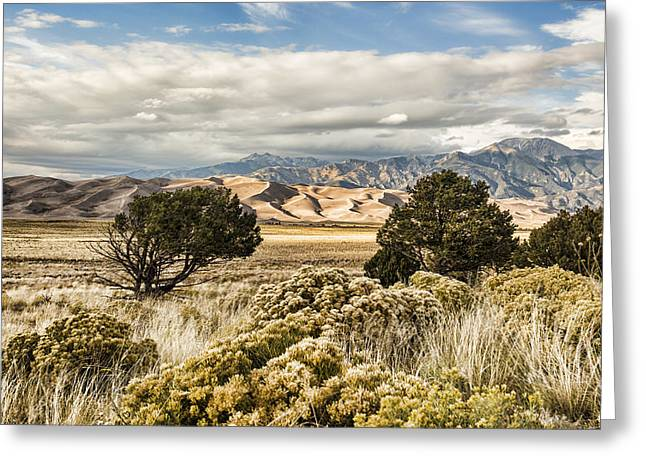 Great Sand Dunes National Park And Preserve Greeting Card