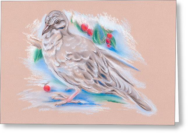 Winter Mourning Dove Greeting Card