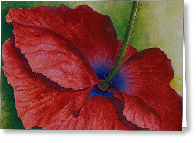 Poppy Remembrance Greeting Card by Barb Toland