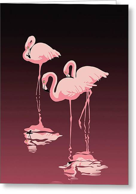 3 Pink Flamingos Greeting Card by Walt Curlee