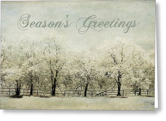 Softly Falling Snow Greeting Card