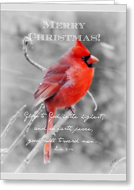 Frosted - Christmas Greeting Card by Anita Faye