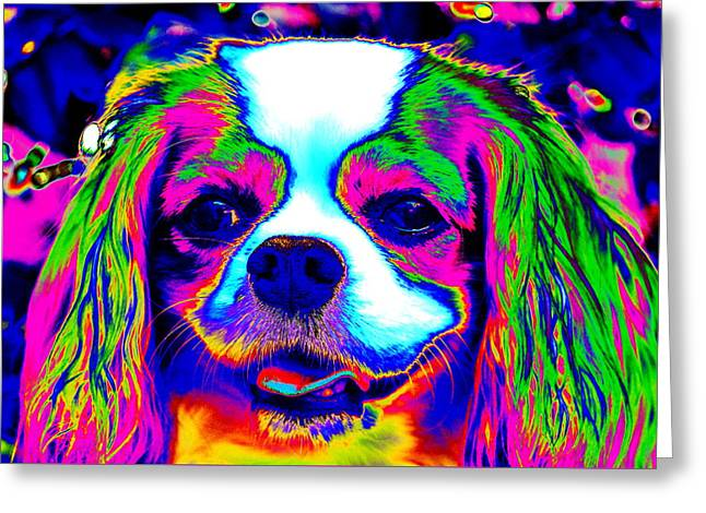 Mardi Gras Dog Greeting Card