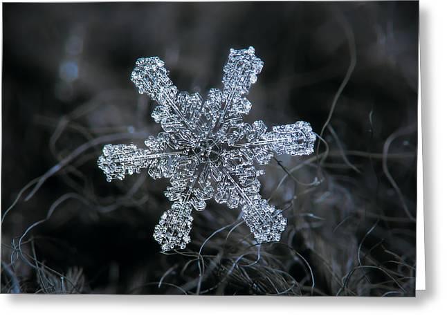 December 18 2015 - Snowflake 1 Greeting Card by Alexey Kljatov