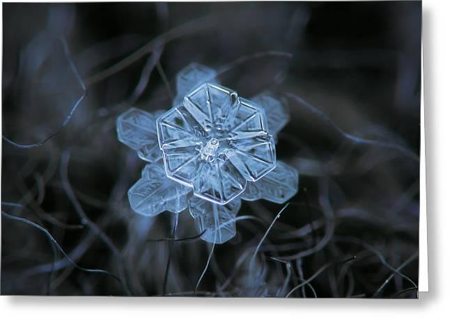 December 18 2015 - Snowflake 2 Greeting Card by Alexey Kljatov