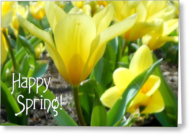 Daydreaming Of Yellow Tulips Greeting Card