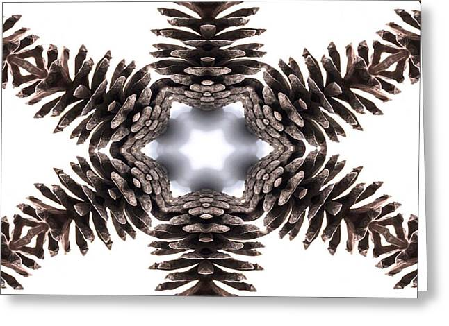 Pinecone Kaleidoscope Greeting Card by Beth Myer