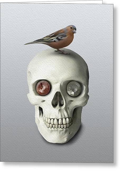 Skull And Bird Greeting Card