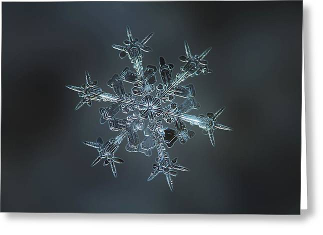 Snowflake Photo - Starlight II Greeting Card