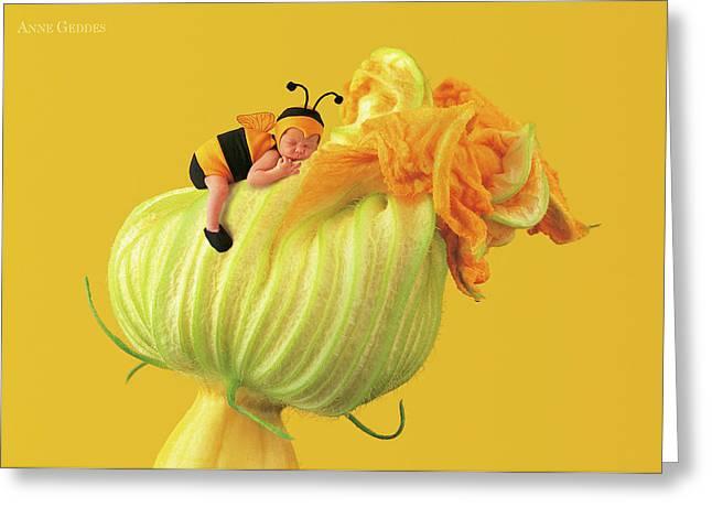 Baby Bee Greeting Card