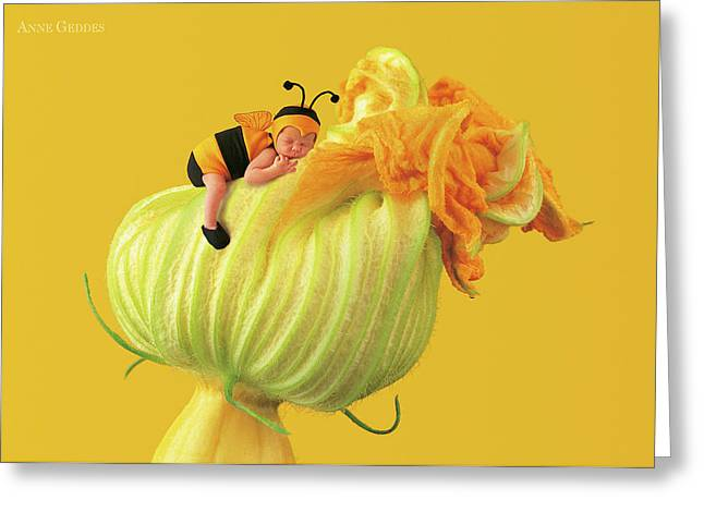 Baby Bee Greeting Card by Anne Geddes