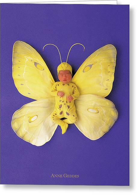 Fiona Butterfly Greeting Card by Anne Geddes