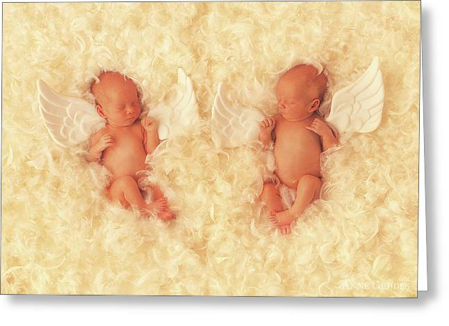 Angels Greeting Card by Anne Geddes
