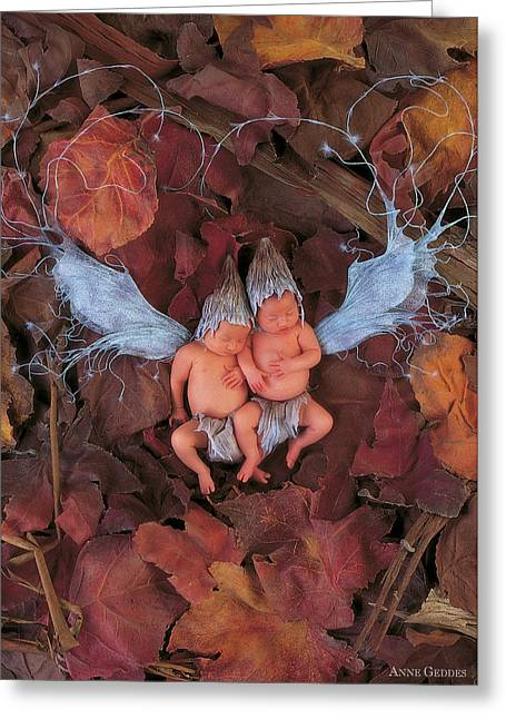 Leaf Fairies Greeting Card by Anne Geddes