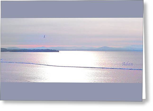 Lake Champlain South From Atop Battery Park Wall Panorama Greeting Card