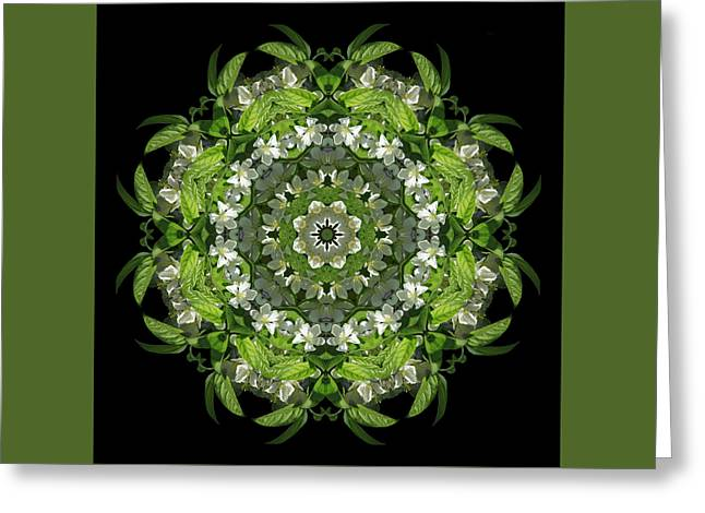Inspired Action Greeting Card by Karen Casey-Smith