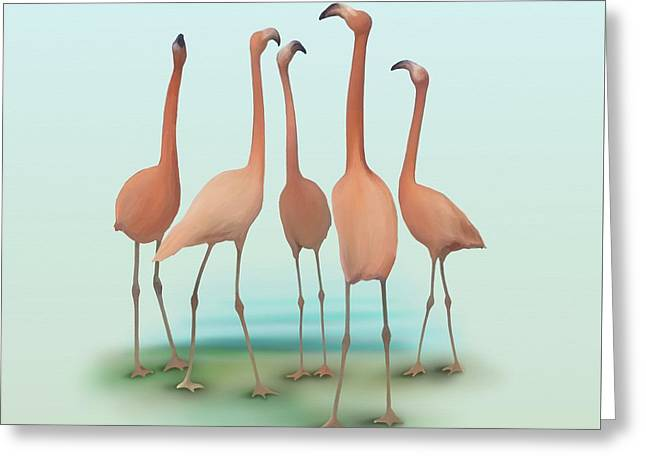 Flamingo Mingle Greeting Card