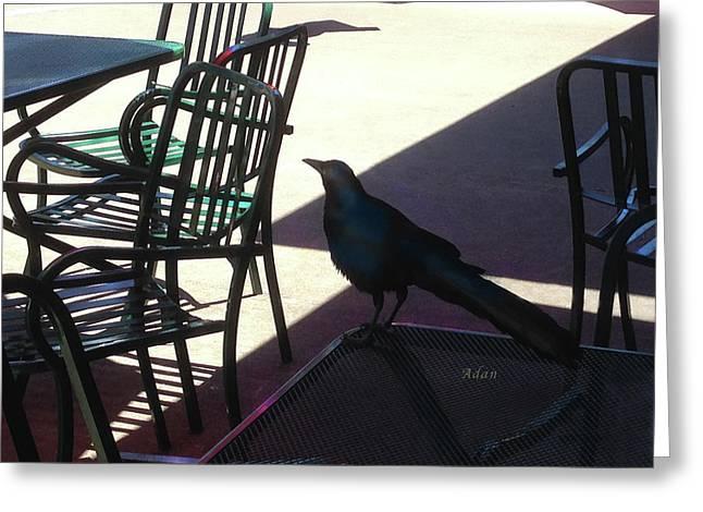 Black Bird At Central Market Greeting Card by Felipe Adan Lerma