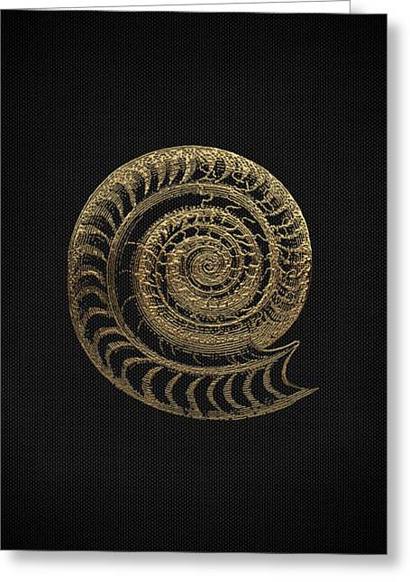 Greeting Card featuring the digital art Fossil Record - Golden Ammonite Fossil On Square Black Canvas # by Serge Averbukh
