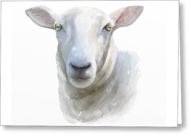Watercolor Sheep Greeting Card