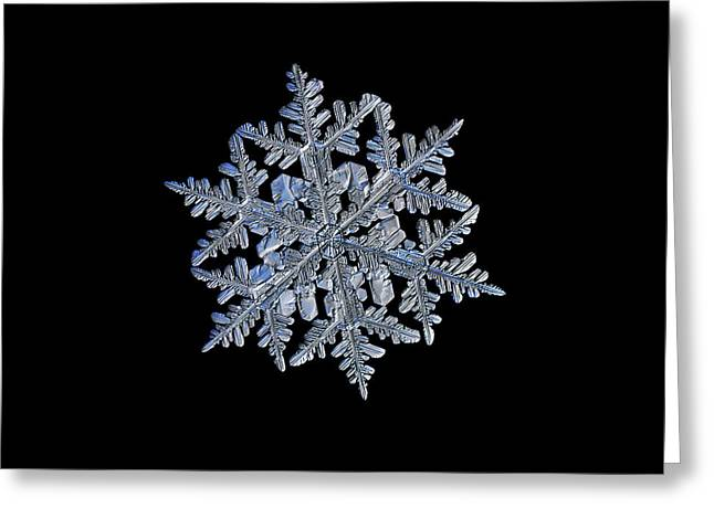 Snowflake Macro Photo - 13 February 2017 - 3 Black Greeting Card