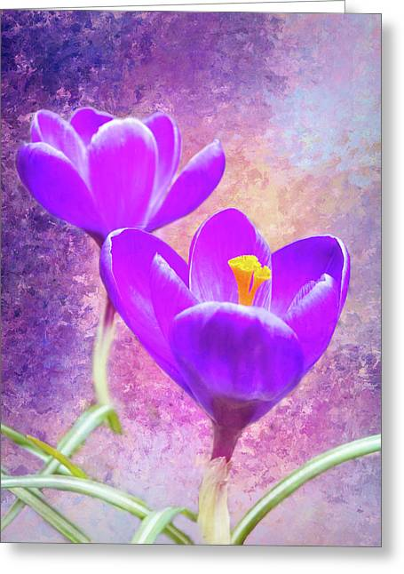 Our First Crocuses This Spring Greeting Card