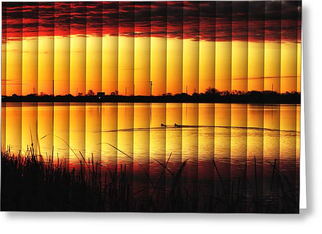 Magnificent Sunrise Swim Greeting Card