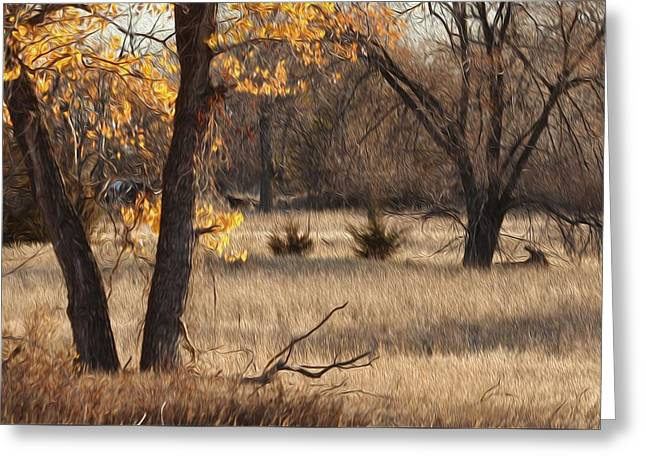 Shades Of Autumn Greeting Card by Bill Kesler