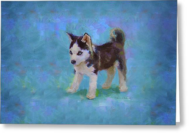 Alaskan Husky Sled Dog Puppy Greeting Card
