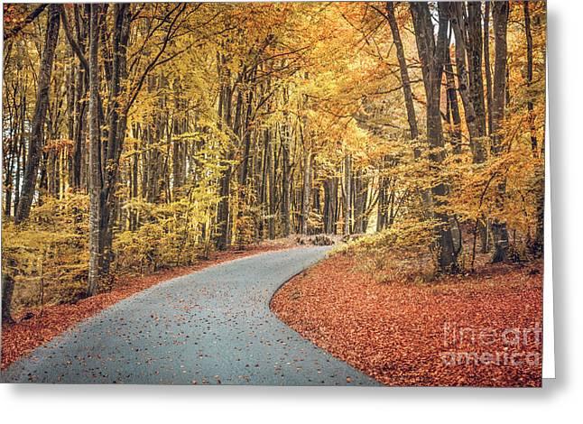 As Autumn Falls Greeting Card