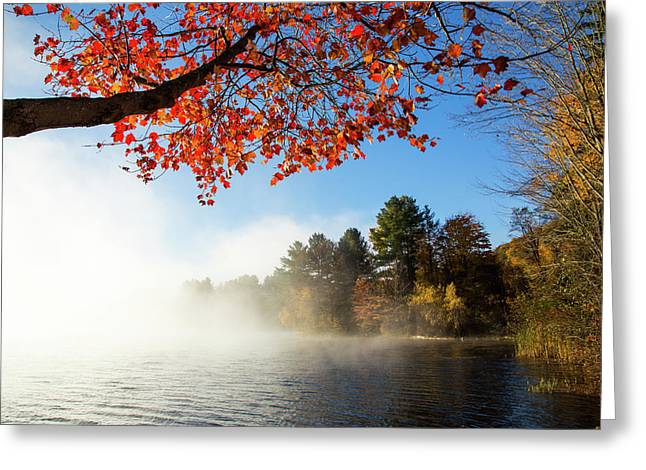 As The Fog Leaves Greeting Card