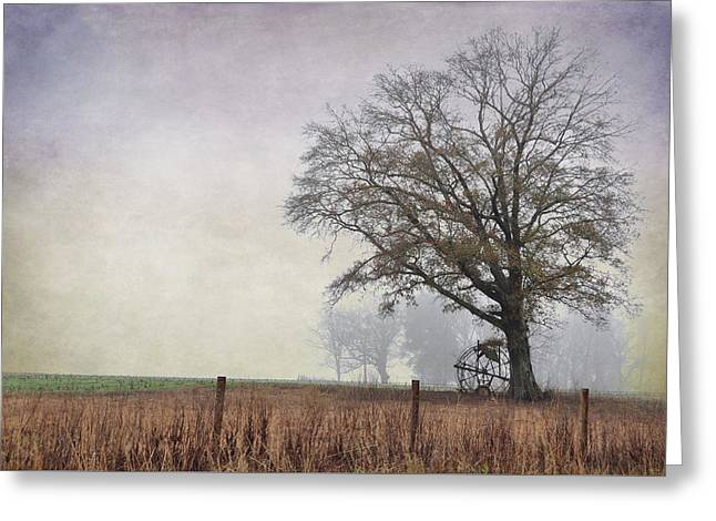 As The Fog Sets In Greeting Card by Jan Amiss Photography