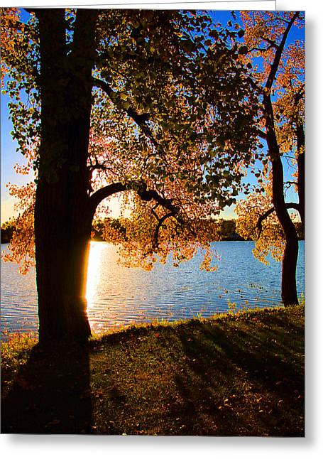 As The Sun Sets In Autumn Greeting Card