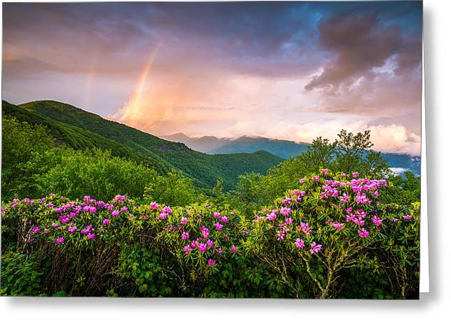 Asheville North Carolina Blue Ridge Parkway Scenic Landscape Greeting Card by Dave Allen