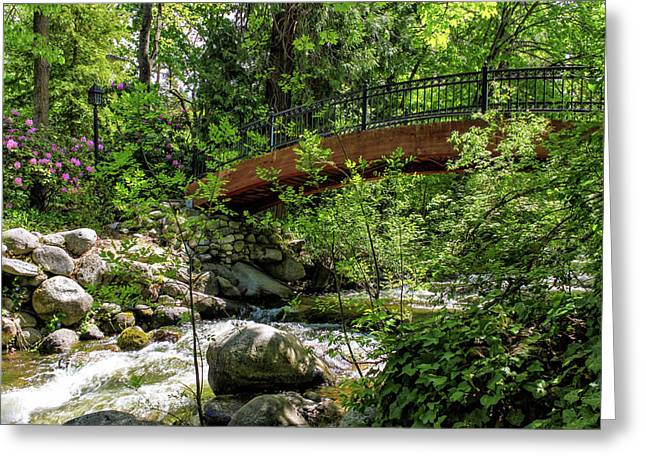 Ashland Creek Greeting Card by James Eddy