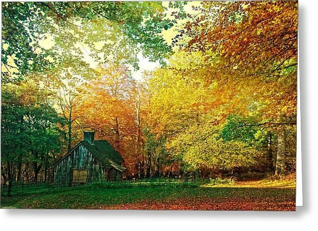 Ashridge Autumn Greeting Card by Anne Kotan